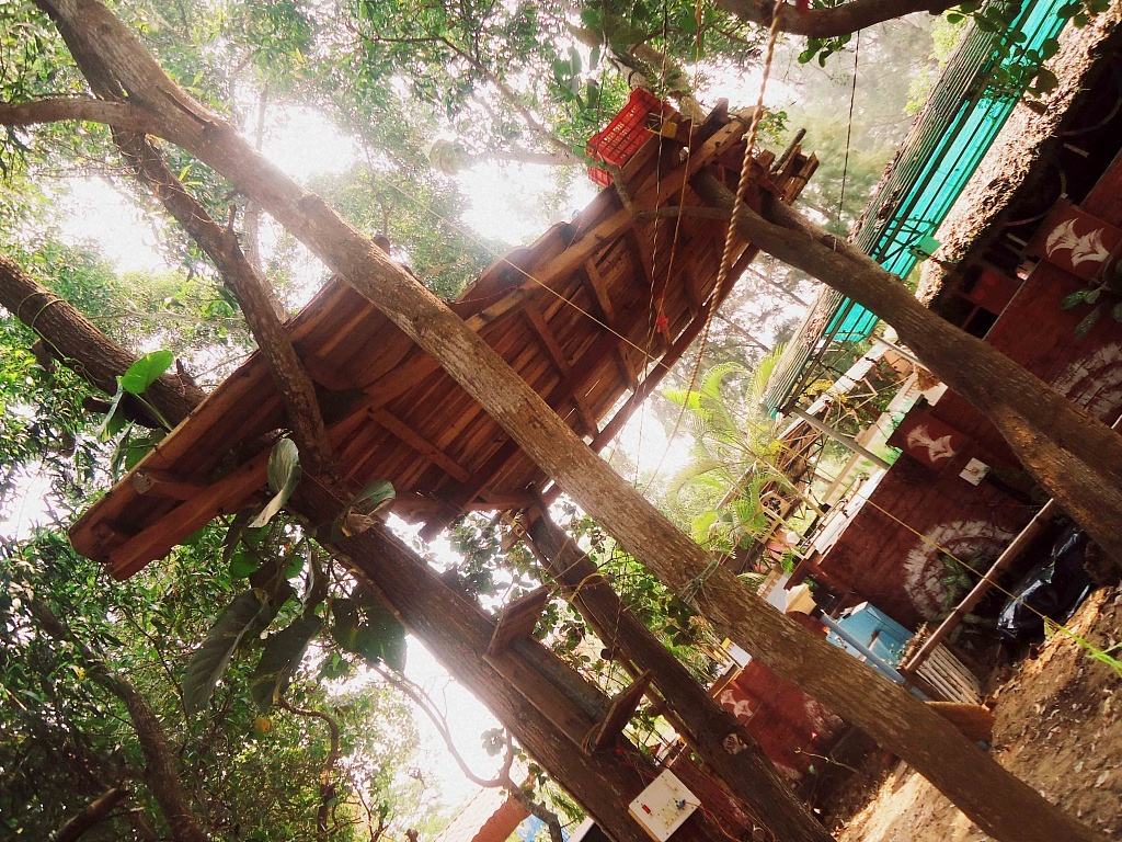 The treehouse in Rangers,  HQ of Surfing Yogis, one of my best places :)